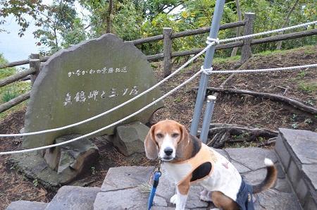 20141126真鶴岬・三ツ石10
