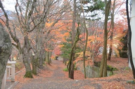 20141130河口湖紅葉の回廊22