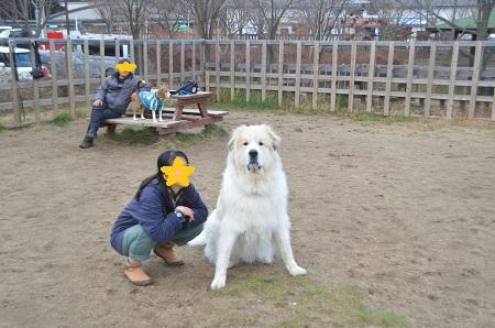 20141130道の駅富士吉田ドッグラン12