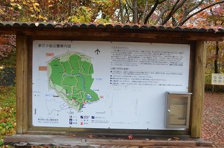 0141201小宮公園02