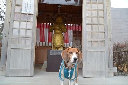 20141130河口湖黄金の七福神巡り27