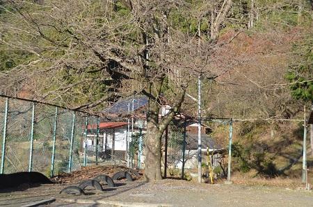 20141207棚沢分校03