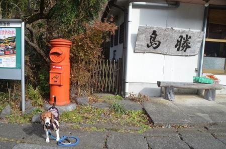 20141207奥多摩丸ポスト26
