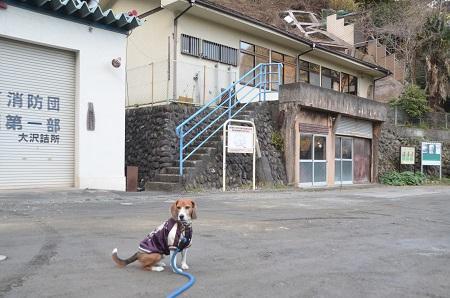 0141207小菅分校09