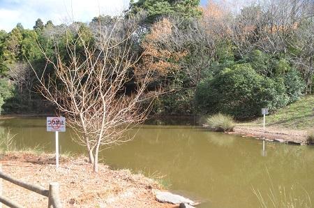 20141217宮の森公園18