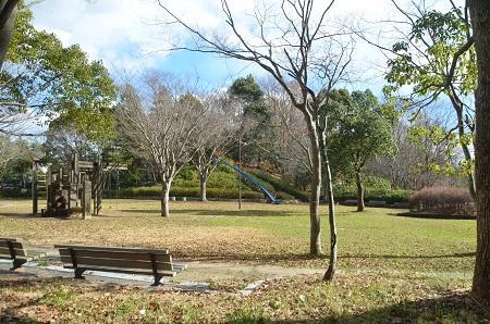 20141217宮の森公園28