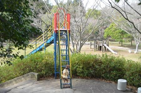 20141217宮の森公園27