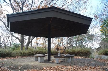 20141217宮の森公園25