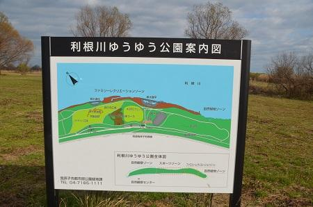 20141221利根川ゆうゆう公園02