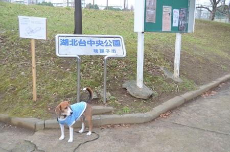 20141221湖北台中央公園06