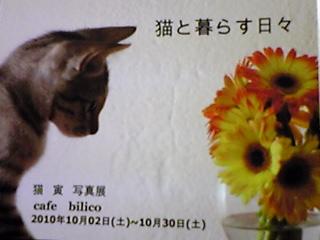 101001_2038_01_20101003111007.jpg