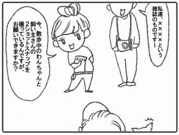 130-3.jpg