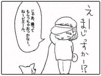 130-6.jpg