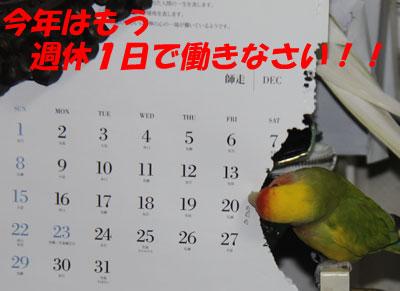 12_sikaesi.jpg