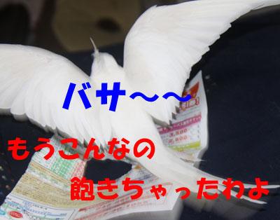 4_飽きた