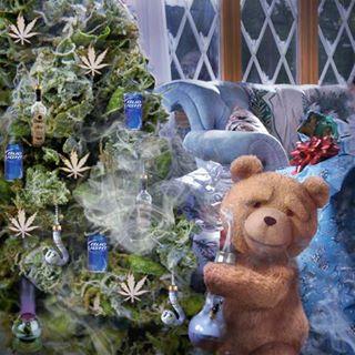 クリスマス仕様のTED