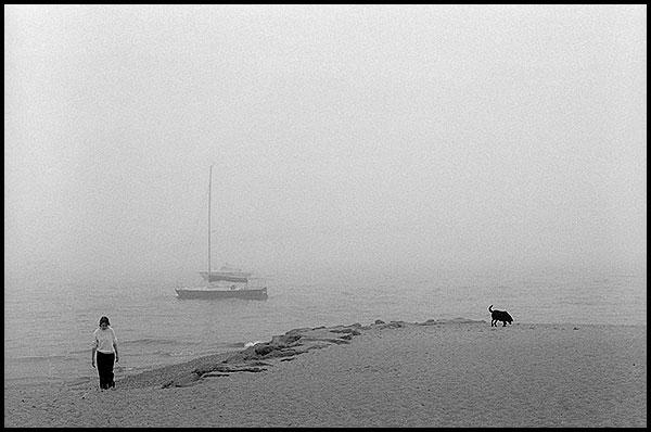 mist-blognew.jpg