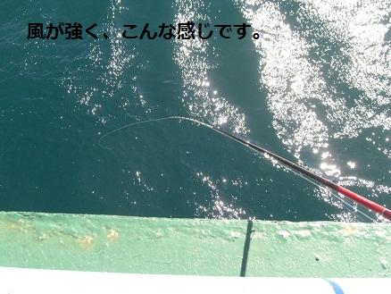 黒鯛31-3