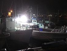 2011釣り1-1