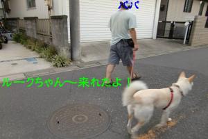 CIMG6620_convert_20100809150536.jpg