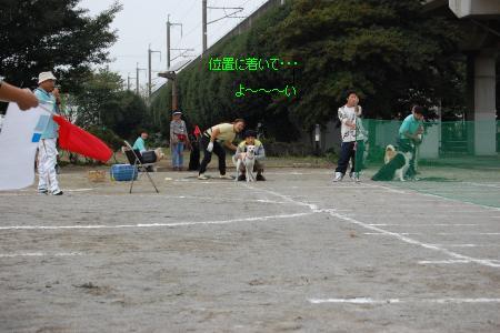 DSC_0059_convert_20101020092243.jpg