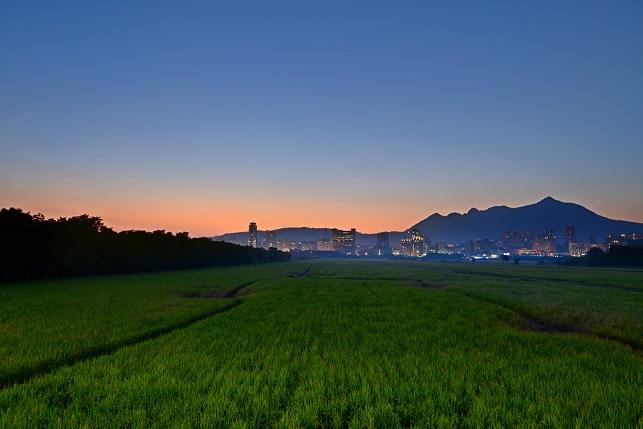 平原の夕暮れ(2)