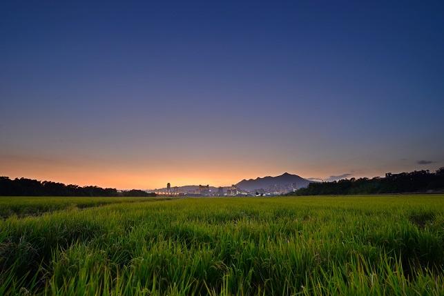 田園の夕暮れ(2)
