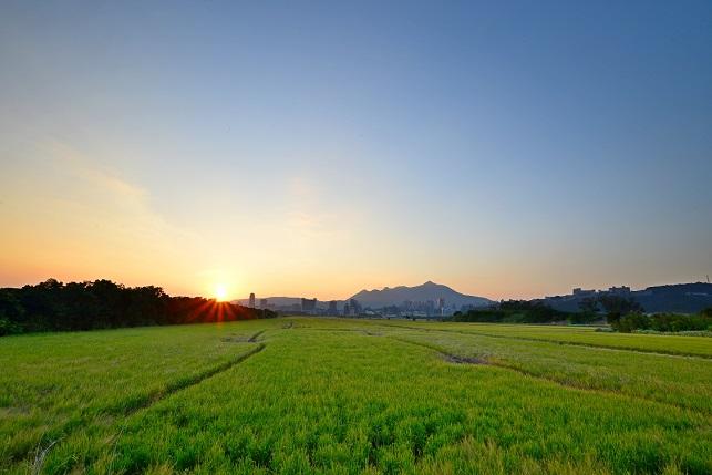 田園の夕暮れ(1)