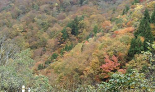 bdcam 2011-10-19 21-11-41-538