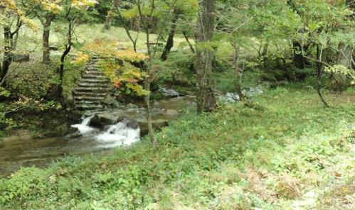 bdcam 2011-10-19 21-11-36-710