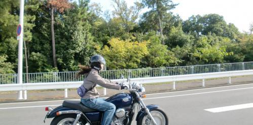 bdcam 2012-10-13 17-02-40-711