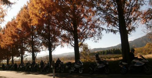 bdcam 2012-11-25 17-50-13-605