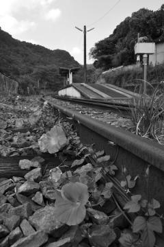 廃線・高千穂鉄道探訪(51)