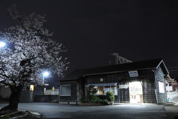 桜情景2012_肥前七浦(3)