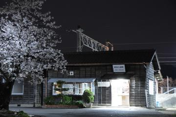 桜情景2012_肥前七浦(5)