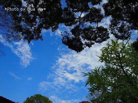 河合神社-空