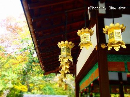 河合神社-境内