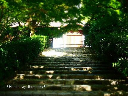 龍安寺-石段