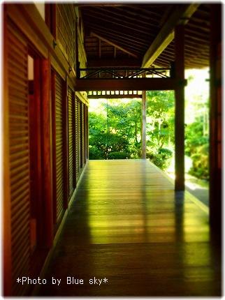 龍安寺-廊下2