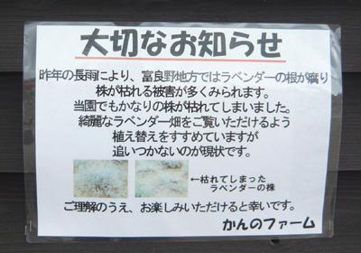 2_20110801220751.jpg
