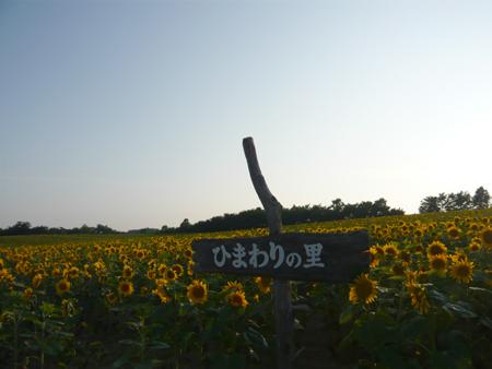 91_20110803225341.jpg