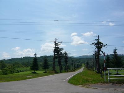 etan4.jpg