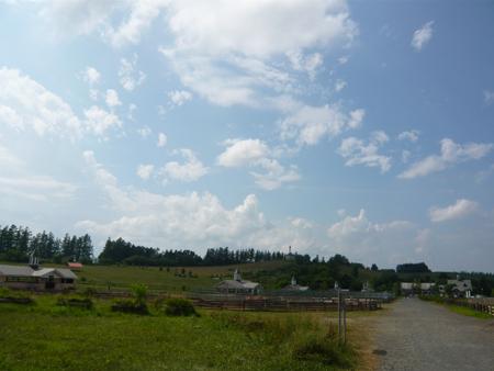 tiyoda5.jpg