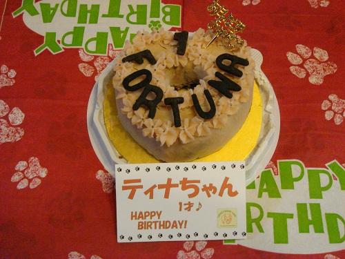 05 キアッケレのケーキ 2