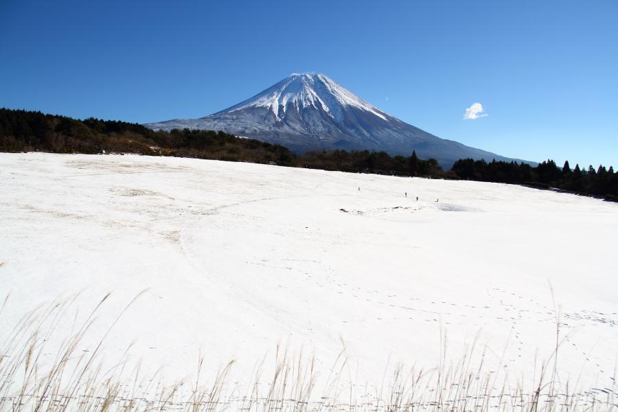 a_Hiroi.jpg
