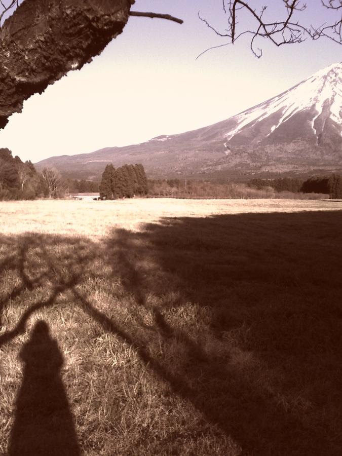 a_Shadow.jpg
