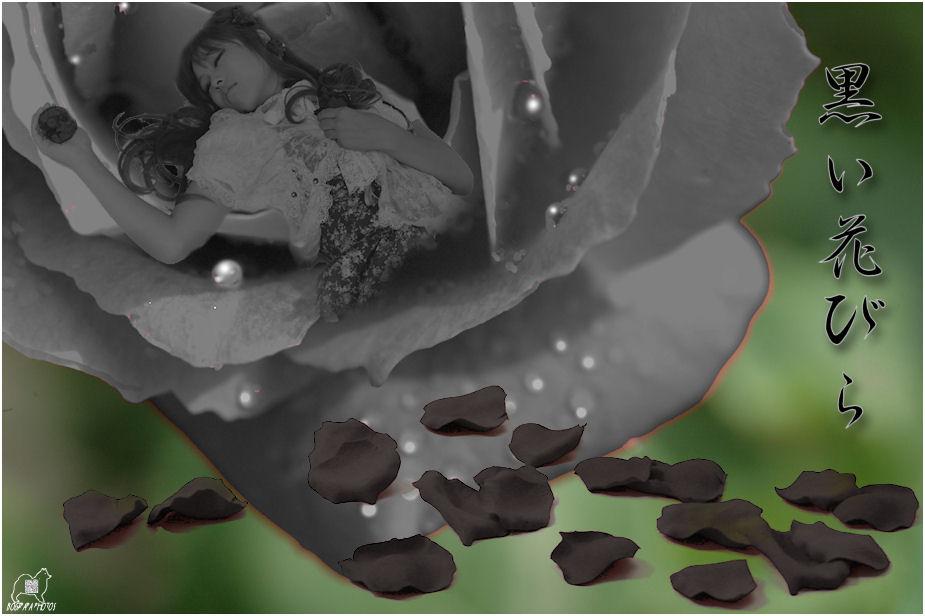 黒い花びら♪