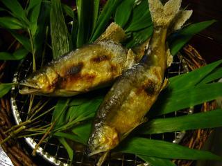 黒茶屋 川魚塩焼き 鮎