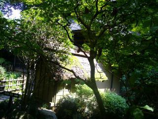 黒茶屋 庭3