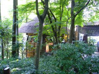 黒茶屋 庭4